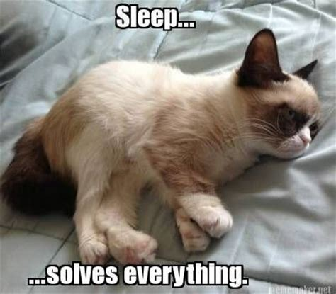 Grumpy Cat Sleep Meme - sleep solves everything animals pinterest