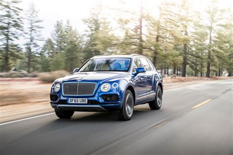 blue bentley 2016 2016 bentley bentayga cars suv blue wallpaper 1600x1065