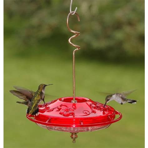 backyard bird feeding aspects hummzinger fancy hummingbird feeder