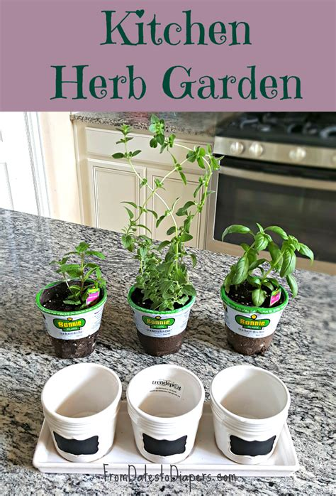 kitchen herb garden design garden design 26124 garden inspiration ideas