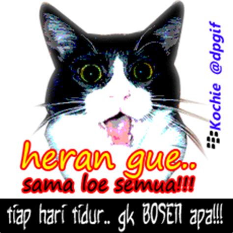 pictures for bbm display pic tidur pictures for bbm display auto design tech