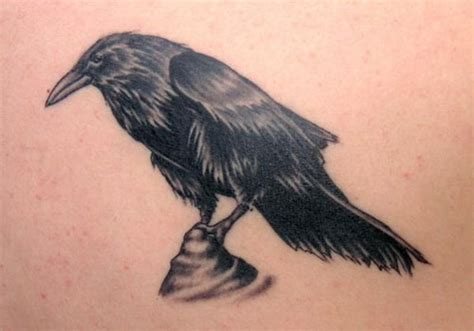 tree and ravens tattoo design 31 impossible designs creativefan