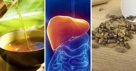 alimenti disintossicano il fegato 6 trattamenti alternativi per il fegato grasso chesuccede it
