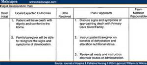 palliative care care plan template hospice care planning an interdisciplinary roadmap