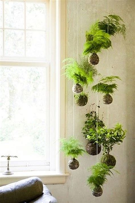 air plants bathroom 20 beautiful kokedama string garden ideas home design