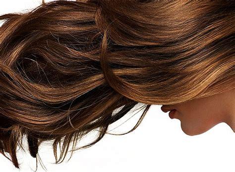 prirodne maske za masnu kosu prirodne maske za suvu kosu frajlica