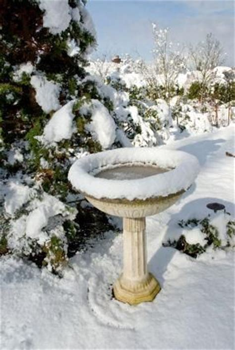 25 best images about bird bath heater on pinterest bird