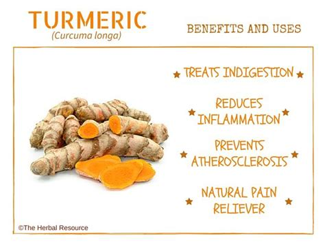 supplement benefits turmeric herb uses side effects and benefits
