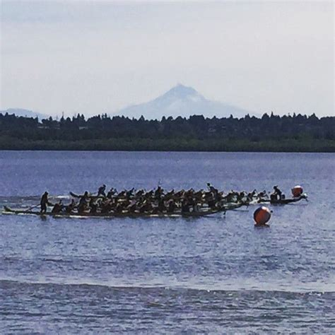 dragon boat racing for beginners best 63 dragon boat racing ideas on pinterest exercise