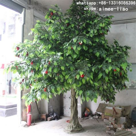 fruit trees for sale q111234 ornamental fruit trees for sale decorative bonsai