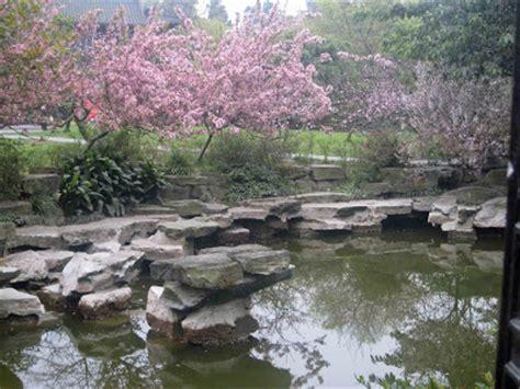 Manisan Buah Persik By Sandyptk bunga persik