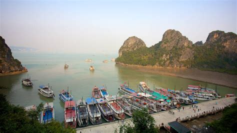 cheap flights  vietnam  book cheap airfare plane   vietnam expedia