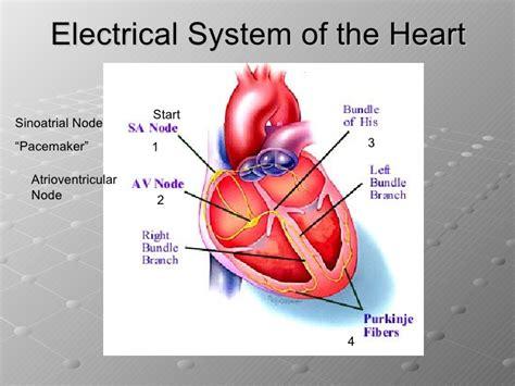 wiring diagram book schneider electric safety diagrams