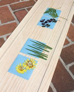 How To Make Sun Print Paper - 1000 images about cyanotype on sun prints