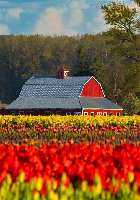 167 Best Cottage Barns Images On Country Barns