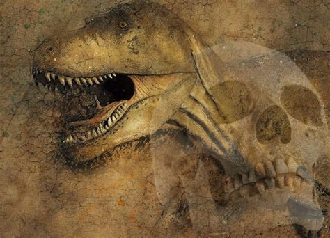 Who Find Dinosaur Bones Human Dinosaur Coexistence Why Don T We Find Dinosaur Fossils Together