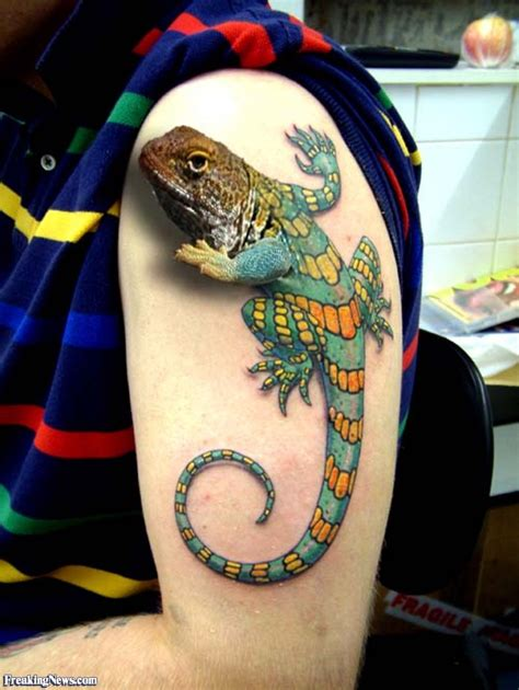 3d tattoo gallery lizard 3d pictures