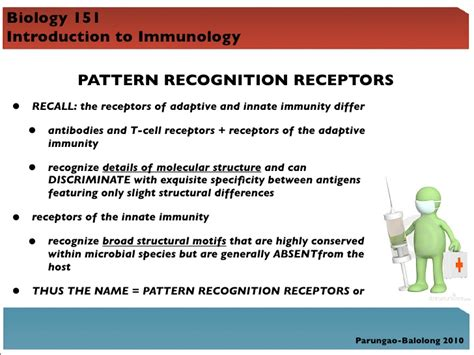 pattern recognition receptors immunology bio 151 lecture 4