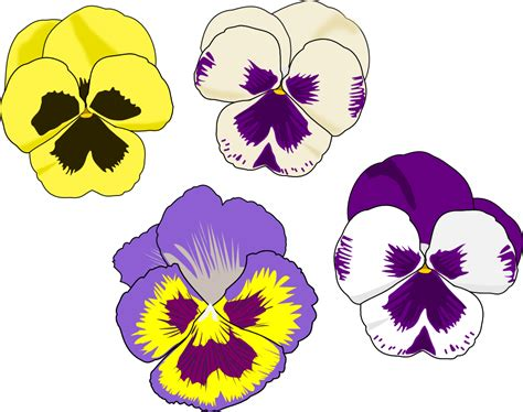 Pansy Clipart purple pansy clip cliparts