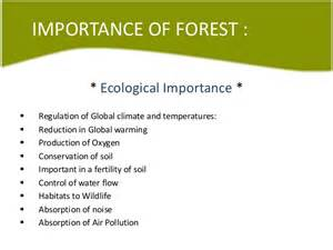 Forest Resources Essay by Forest Resources