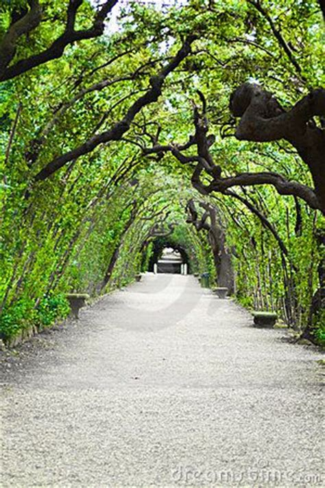 Garden Arbor Tunnel 88 Best Arbor Adore Images On Arbors Garden