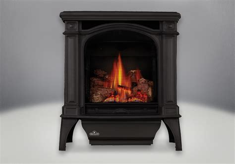 Outdoor Linear Fireplace - napoleon bayfield direct vent cast iron gas stove gds25nsb