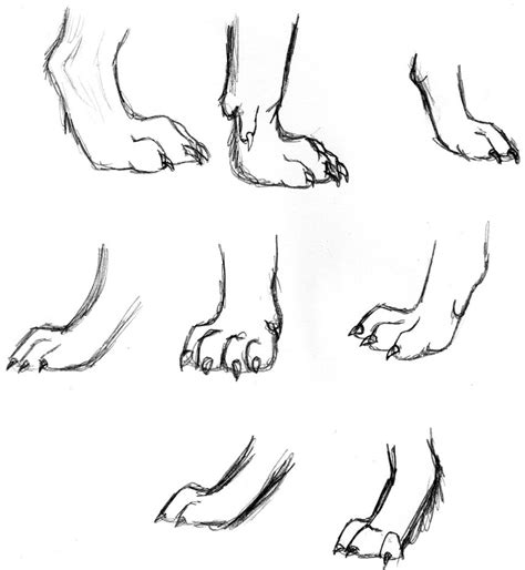 werewolf paw tutorial wolf paws drawing tips pinterest werewolves and drawings