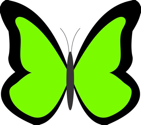 free printable clipart free clipart green butterfly clipart best