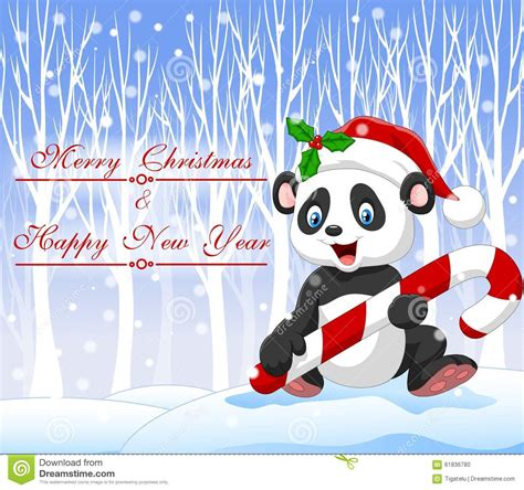 cute christmas panda bear cartoon funny panda bear holding christmas candy with