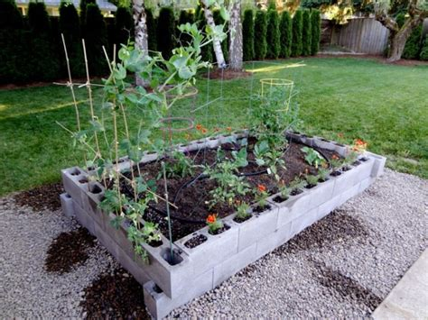 cinder block garden bed cinder block raised garden bed how does you garden grow