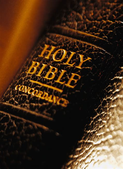 the holiness of god books how to use the bible to disprove just about anything god