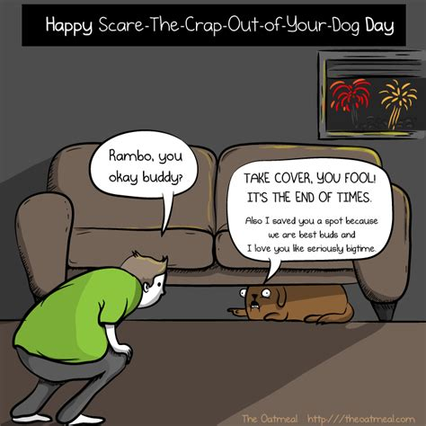 afraid of fireworks taj mutthall diary speaking of dogs being scared of fireworks