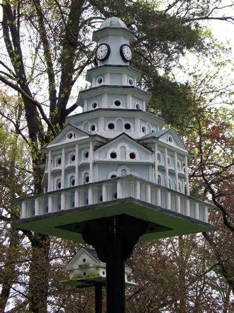plans for purple martin house building purple martin bird houses bird cages