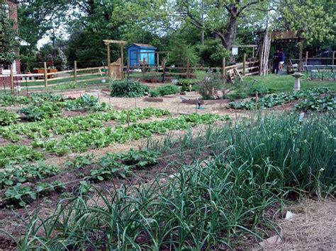 gardening beds vegetable garden vegetable gardening a beginner s guide nc state