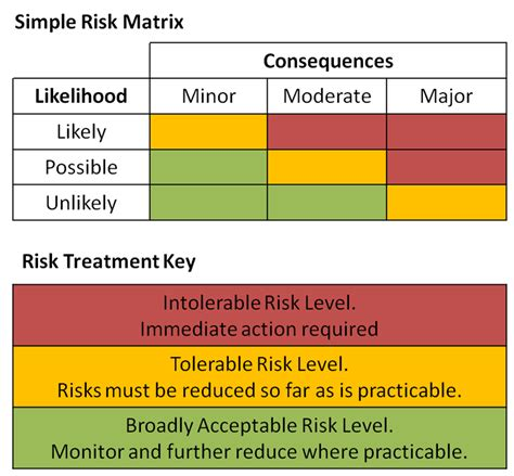 issue detection and risk management analysis template
