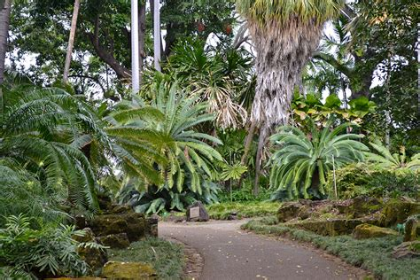 Foster Botanical Garden Foster Botanical Gardens A Tranquil Oasis In The Middle Of The City