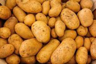Potatoes: Planting, Growing, and Harvesting Potatoes   The