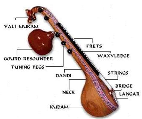 imagenes de instrumentos musicales que tengan cuerdas the vina is one of the most important instruments of south