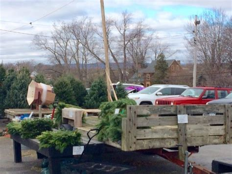 christmas tree farms with real estate in monroe or carbon county pa trees at pennings farms warwick ny