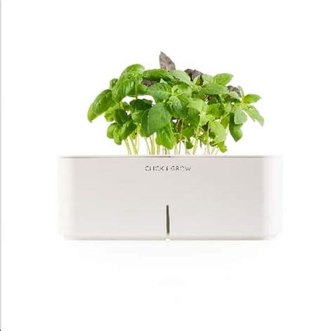 click and grow click and grow electronic flowerpots