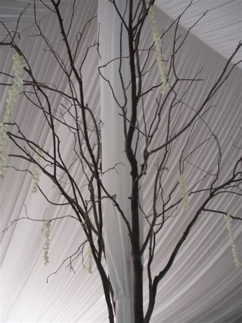 center pole tree branch decor tented events pinterest