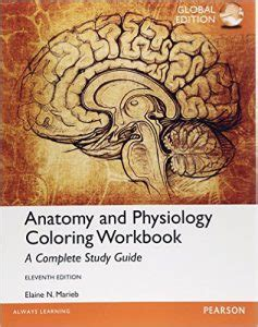 anatomy and physiology coloring book elaine marieb pdf anatomy and physiology coloring workbook a complete study
