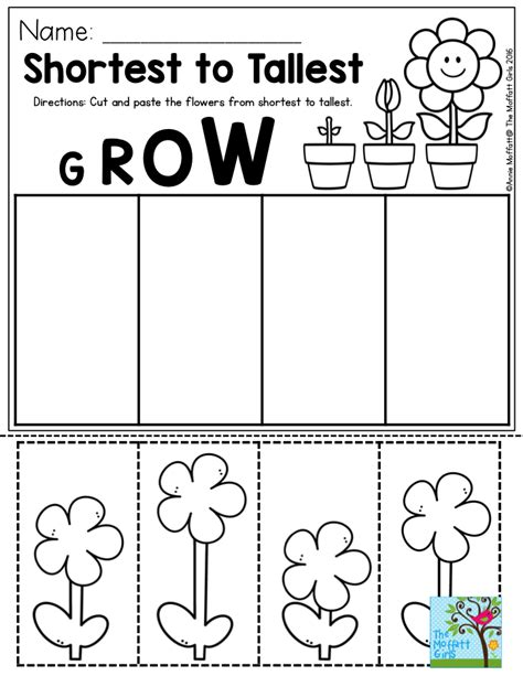 kindergarten activities cut and paste shortest to tallest perfect for a gardening unit in
