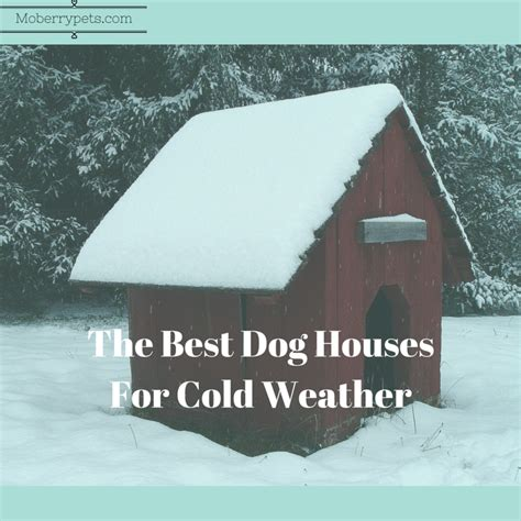 best dog houses for cold weather best dog house for cold weather moberry pets