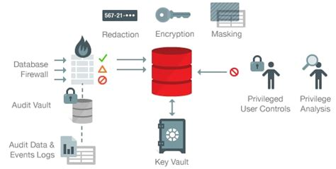 Database Security oracle database security