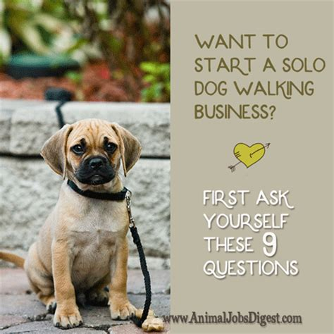 when to start walking a puppy animal digest want to start a walking business ask yourself