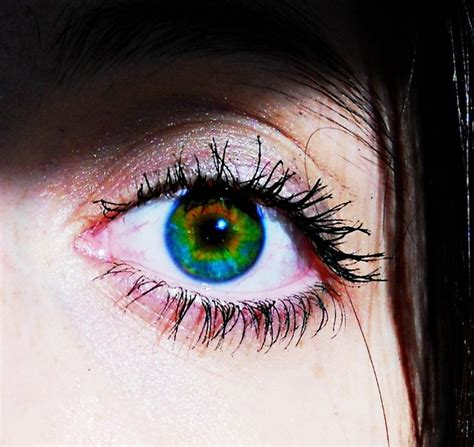 coolest eye colors 45 best heterochromia images on pretty