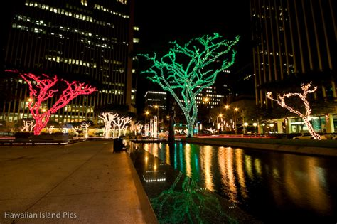 honolulu christmas city lights urban life travel in