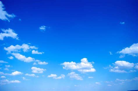 wallpaper hd blue sky cute baby blue whale wallpaper