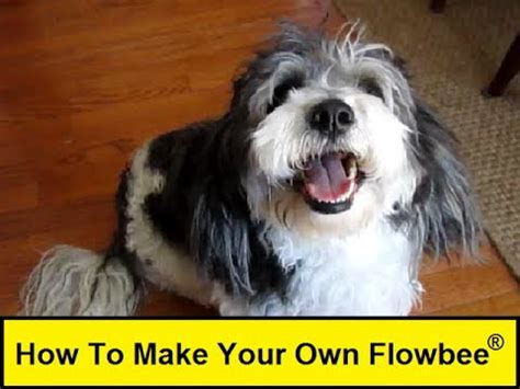 flowbee for dogs how to make your own flowbee